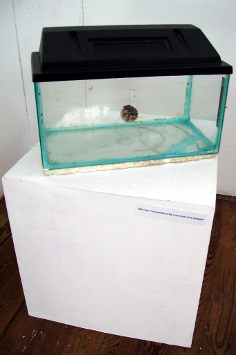 After Hirst: The possibility of life in the mind of the bereaved