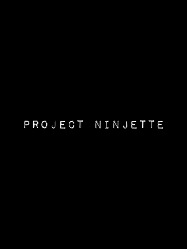 Project Ninjette, 2015; video instalation (duration 17 minutes)